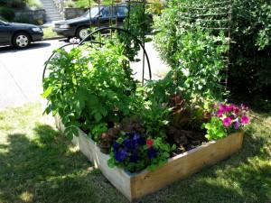 garden-2010